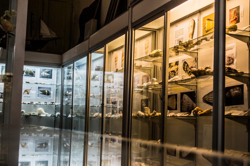 museo-del-mar